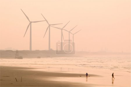 Wind power with light fog near the beach in the ev...