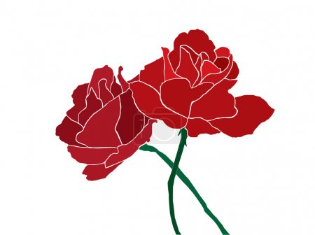 Illustration for Two red roses isolated on white - Royalty Free Image