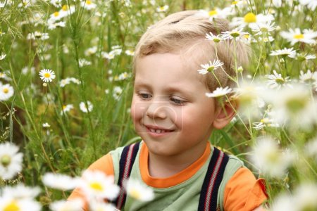 3 years boy on daisy field