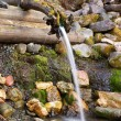 Source of life (water source in the Russia)...