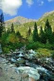 Mountains colorful landscape