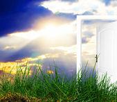 Door open to new world