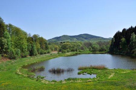 Photo pour Étang dans les montagnes, beau paysage - image libre de droit