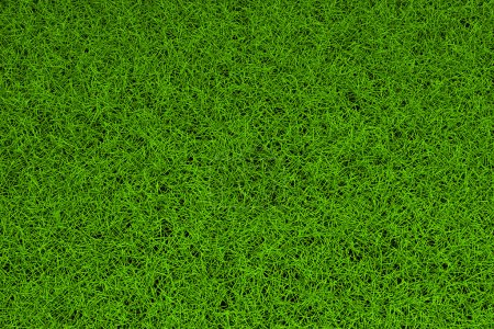 Photo for High resolution green grass background - Royalty Free Image