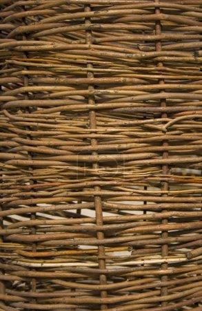 Wicker wooden fence