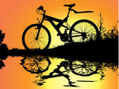 Bicycle rest in sunset near water reflection