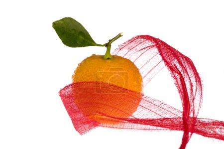 Photo pour Noël doux en arc rouge. fruits d'orange - image libre de droit