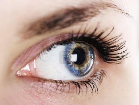 Photo pour Gros plan oeil de femme (peu profond DoF ) - image libre de droit