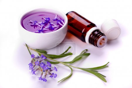Photo pour Fleur de lavande, savon, extrait et huile essentielle isolé sur blanc - image libre de droit