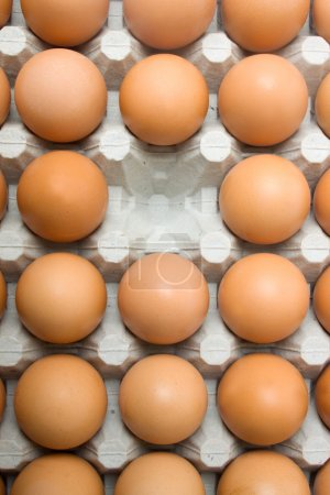 Photo for One egg is missing from the cart of chicken eggs - Royalty Free Image