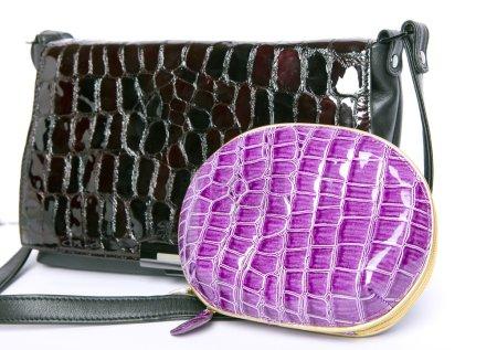 New handbag and purse