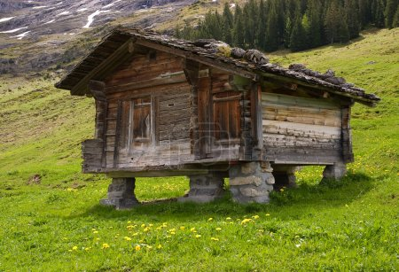 Wooden mountain hut with a stone roof