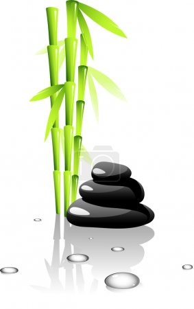 Illustration for SPA. Bamboo and black stones.Isolated on white. EPS 8, AI, JPEG - Royalty Free Image