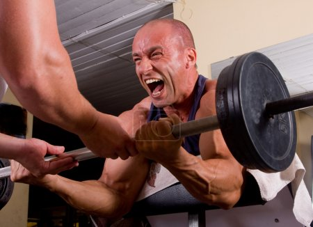 Photo for Bodybuilder training his bicep in gym - Royalty Free Image