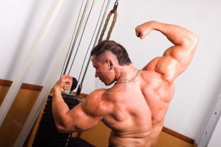 Photo for Bodybuilder posing in the gmy - Royalty Free Image