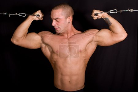 Photo for Bodybuilder training in the gym - Royalty Free Image