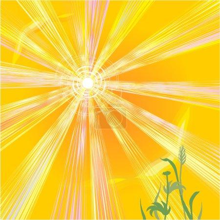 Hot sun of summer