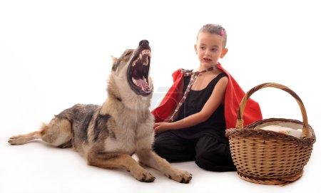 Photo pour Petit Chaperon Rouge et loup en colère - image libre de droit
