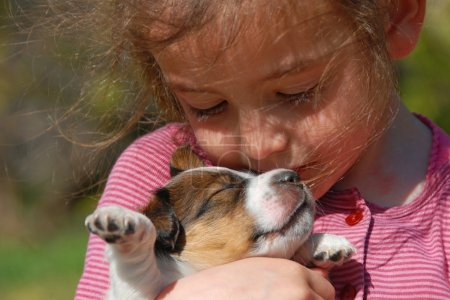 Photo for Little girl and her very young puppy jack russel terrier - Royalty Free Image