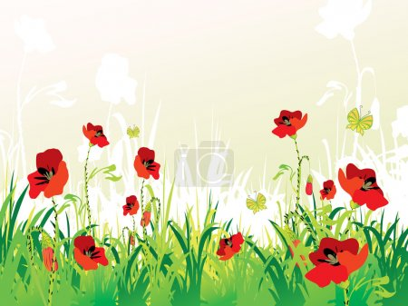 Illustration for Red poppies on green field, vector illustration - Royalty Free Image