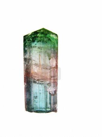 Photo pour Un rare cristal de tourmaline de 10cm d'elbaite tricolore, Brésil. Métaphysiquement, il équilibre le métabolisme, le système endocrinien et le système immunitaire . - image libre de droit