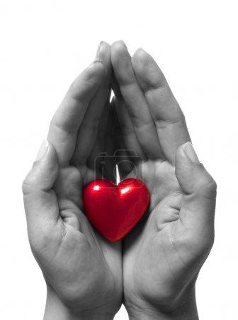 Photo pour Coeur en mains, isolé sur blanc - image libre de droit