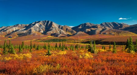 Alaska Denali National Park in autumn