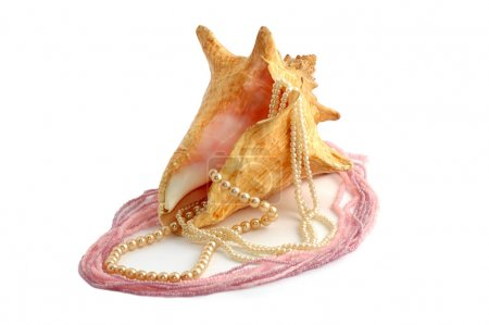 Sea cockleshell with a pearl beads