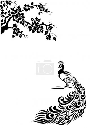 Photo for Peacock under an Oriental cherry - Royalty Free Image