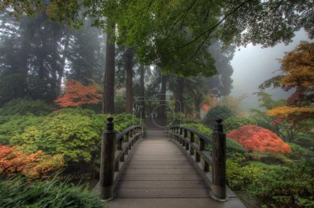 Photo for The Bridge in Portland Japanese Garden in the Fall - Royalty Free Image