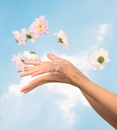 Women hands and flowers