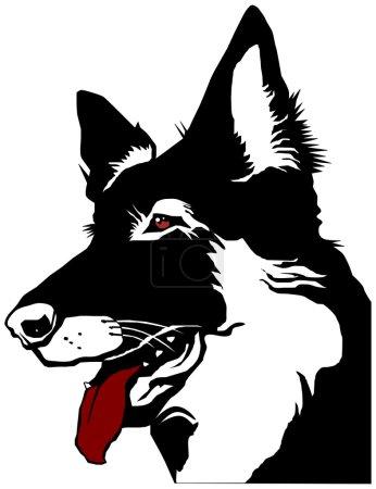 Head dog shepherd