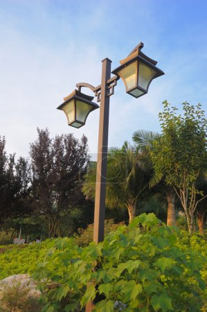 Photo for Street lamp with trees surrounding and blue sky in background - Royalty Free Image