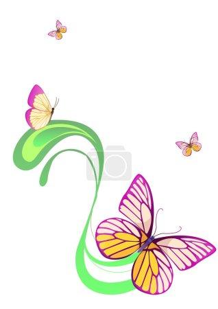 Photo pour Illustration du modèle, présentant des fleurs de couleur papillon rose isolé sur blanc - image libre de droit