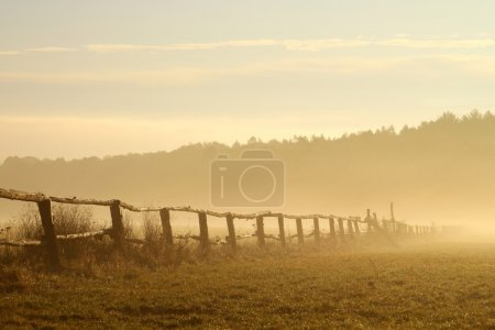 Misty sunrise over the field