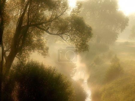 Photo pour Lever du soleil printanier sur la prairie brumeuse avec rivière coulante. Photo prise avec filtre souple . - image libre de droit