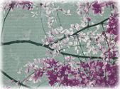 Květy fialové a bílé květy