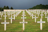 Rows of tombstones in a military graveya