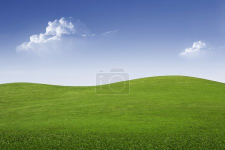 Photo for Panoramic view of nice green hill on blue sky background - Royalty Free Image