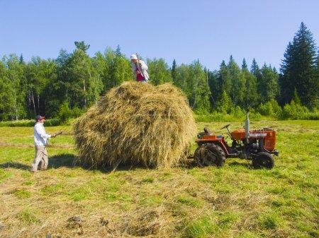 Haymaking in Siberia