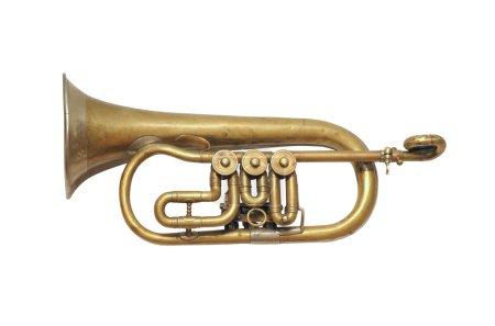 Old vintage musical instrument