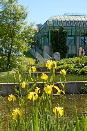 Garden of ecological library