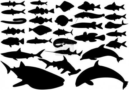 Illustration pour Set de poissons, illustrations vectorielles noires sur fond blanc - image libre de droit