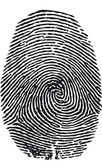 Fingerprint-vector