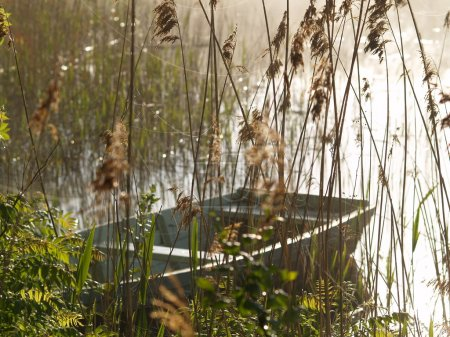 Boat on the lake in a misty morning
