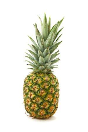 Ananas isoliert auf Weiß
