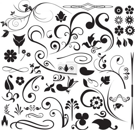 Illustration for Modern detailed intricate floral illustrations with swirls - Royalty Free Image