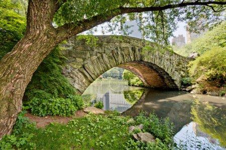 Photo pour Un pont en pierre, pont Gapstow, à Central Park, NY . - image libre de droit