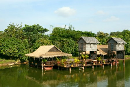 Houses on stilts.Cambodia.