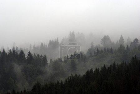 Photo pour Monts Brumeux - image libre de droit